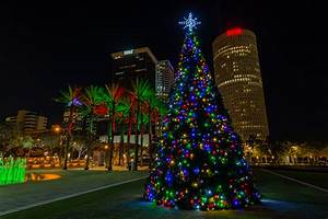 Christmas Colors in Tampa | Matthew Paulson Photography