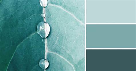 nature inspired color palettes aka design seeds
