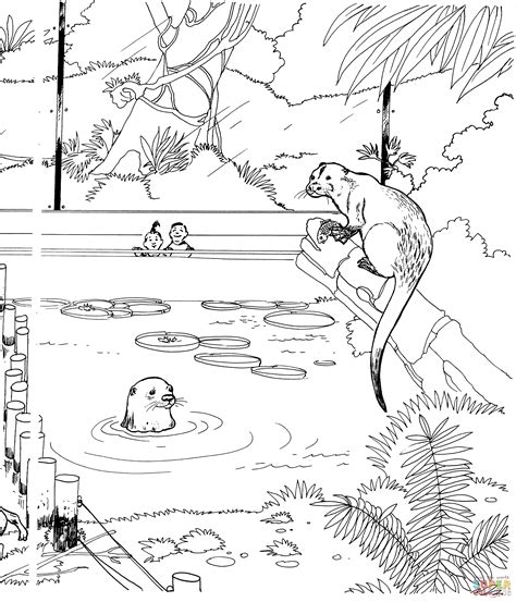 River Otter In A Zoo Coloring Page Free Printable
