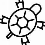 Icons Gratis Freepik Tortuga Shell Zeeschildpad Tartaruga