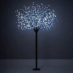 christmas lights our pick of the best blossom trees With outdoor string lights john lewis