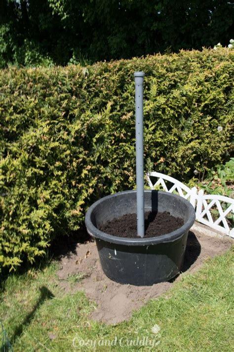 Schnecken Natürlich Bekämpfen by Schnecken Nat 252 Rlich Bek 228 Mpfen Salat Aus Dem Garten Im