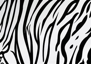 White Tiger Stripe Pattern Vector - Download Free Vector ...