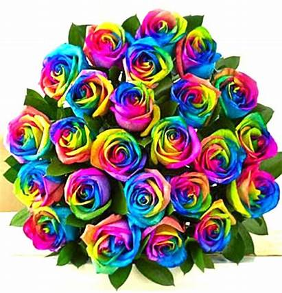 Rainbow Roses Bouquet Sydney Delivered Valentines Flowers