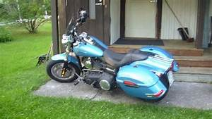 Anyone With Hard Color Matched Saddlebags