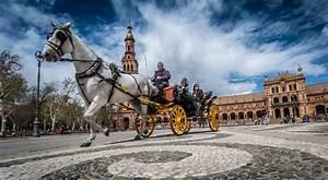 4 best ways to move around Sevilla! | RoomSevilla