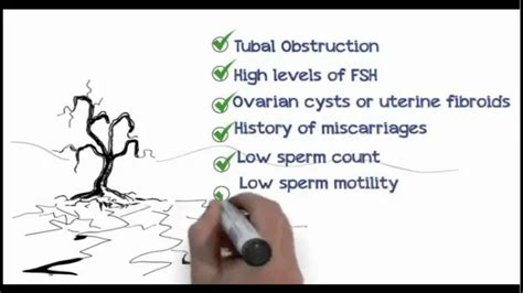 Irregular Periods How To Get Pregnant Transexual You Porn