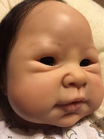 Asian Bountifulbaby Bountiful Mb