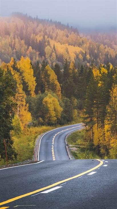 Portrait Landscape Nature Road Forest Display Trees