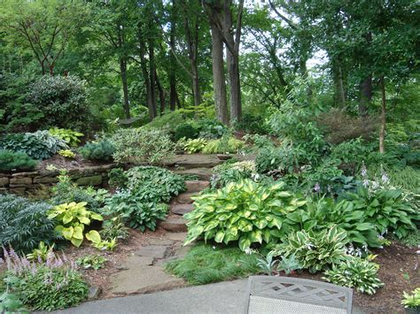 shade garden pictures garden designers roundtable trees an important element in landscape design