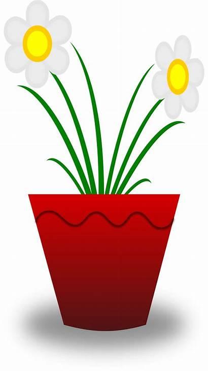 Pot Flower Plant Clipart Flowerpot Clip Flowers