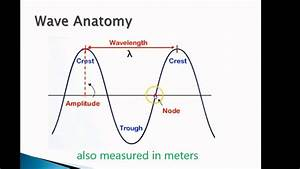 Waves Review 1  Anatomy Of The Transverse Wave