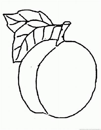 Peach Coloring Fruit Pages Printable Princess