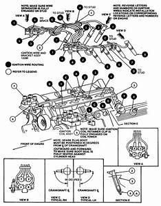 1992 Mercruiser 4 3 Engine Diagram  1992  Free Engine
