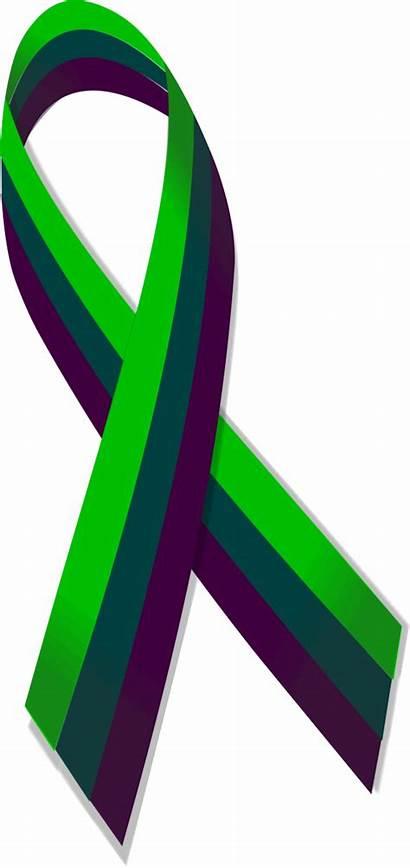 Ribbon Kidney Awareness Sponge Medullary Commons Wikimedia