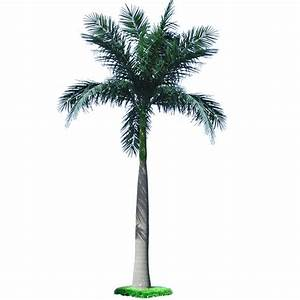 Palm Trees Archives - Dongyi