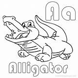 Alligator Coloring Pages Baby Cute Printable Drawing Crocodile Easy Sheets Getdrawings Line Getcolorings Paintingvalley Template Drawings sketch template
