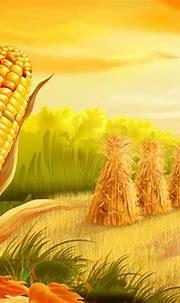 Corn Field Artistic Wallpaper 2560x1600 : Wallpapers13.com