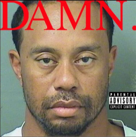 Tiger Woods Meme Tiger Woods Got A Dui And The Is Already