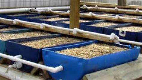 Lade Per Coltivare Indoor coltivare in idroponica