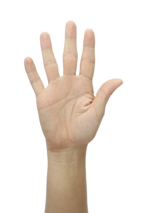 Five Fingers by Five Fingers