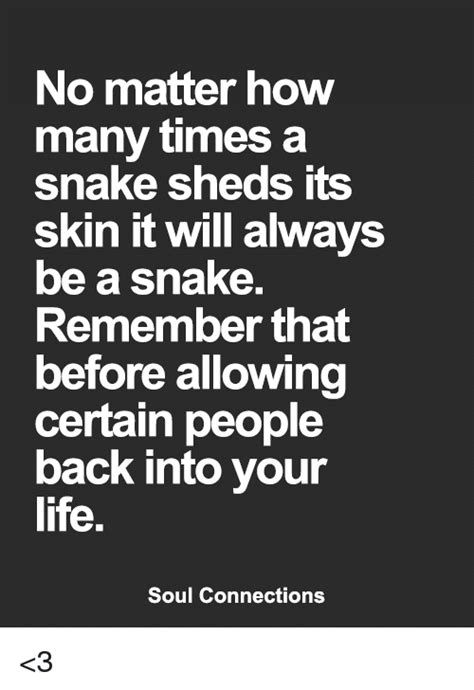 How Many Times Does A Snake Shed Its Skin by No Matter How Many Times A Snake Sheds Its Skin It Will