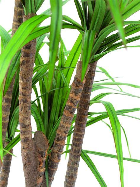 Yucca Palme Naturstämme 150cm Palme Kunstpalme Dekopalme