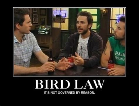 Always Sunny In Philadelphia Memes - its always it s always sunny and art on pinterest