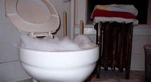 Comment Deboucher Une Canalisation : prix d bouchage wc et canalisation astuces pour nettoyer la maison ~ Melissatoandfro.com Idées de Décoration
