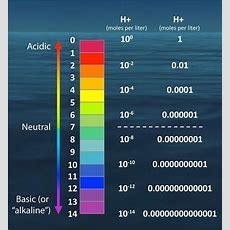 Ph Scale Newagenutrients