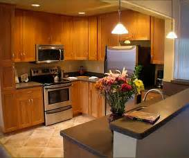 kitchens furniture modern wooden kitchen cabinets designs furniture gallery