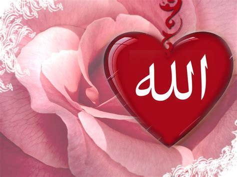 bunga mawar mutiara striving to be a precious muslimah insha allah a