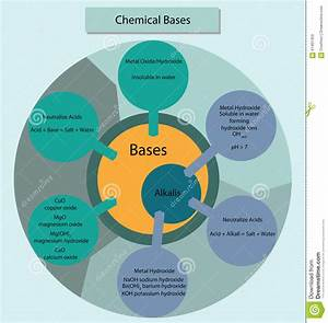 Chemical Bases And Alkalis Summarisied In Diagram Form  Stock Illustration