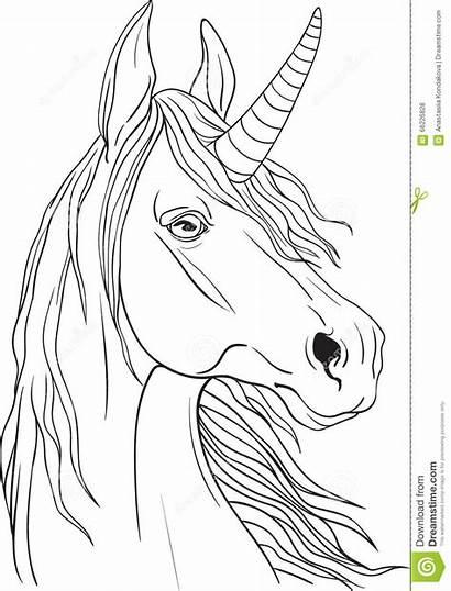Coloring Portrait Unicorns Pagina Coloritura Unicorn Kleurende