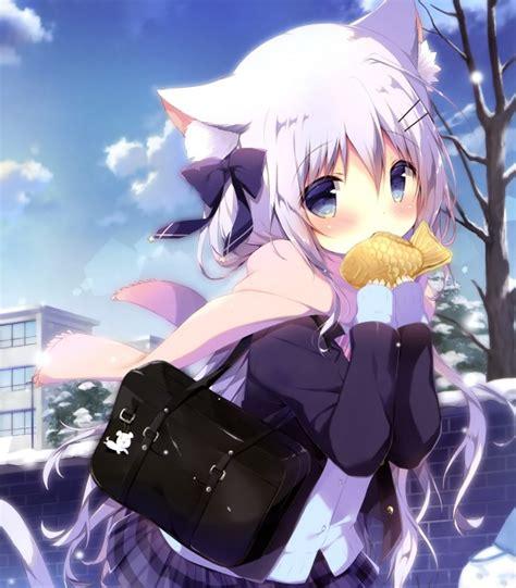 Wallpaper Anime Girl Loli Animal Ears White Hair Scarf