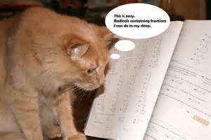 math cats actionz cc s for meooow