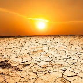 Image result for sun scorched