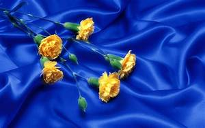 WnP: Wallpapers & Pictures: Blue with yellow flower wallpaper