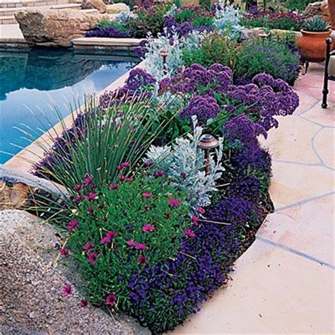 plants for patio borders flowers around a patio border potted plants pinterest gardens beautiful and garden borders