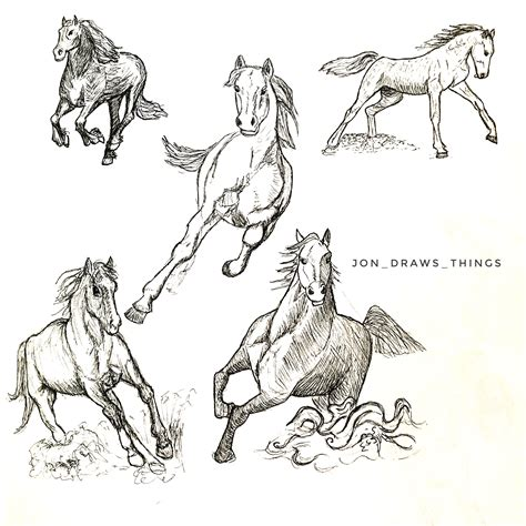 horse dynamic pose reference animal drawing reference
