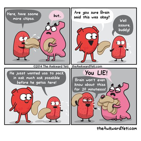 The Awkward Yeti » Characters » Stomach