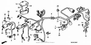 Wire Harness For 2004 Honda Vt1100