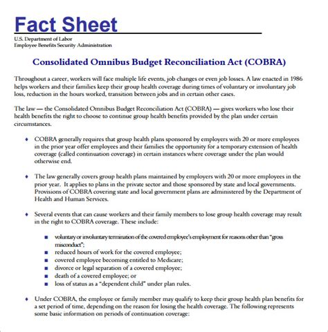 fact sheet template fact sheet templates word excel sles