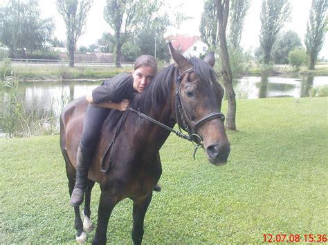 mein pferd foto bild tiere haustiere pferde esel