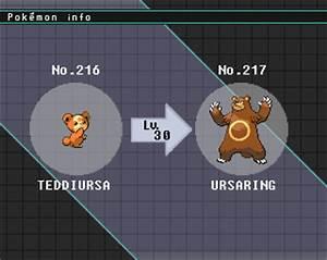 Pokémon Of The Week Ursaring