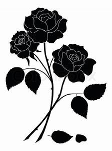 Flowers rose, silhouette | Stock Photo | Colourbox