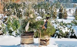 Große Winterharte Kübelpflanzen : winterharte k belpflanzen pflanzenschutz ~ Michelbontemps.com Haus und Dekorationen