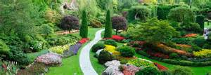 Native Plants Landscaping