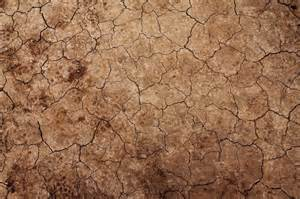 Ground Nature Texture Backgrounds
