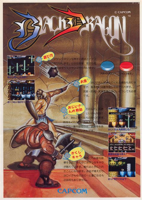 The Arcade Flyer Archive Video Game Flyers Black Dragon